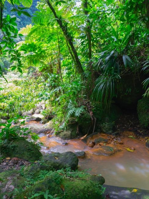 dominique, antilles, trafalgar falls