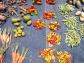 couleurs, ambiances, marché, pointe à pitre, guadeloupe