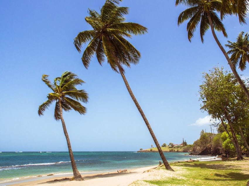 sainte-lucie, choiseul, photographie, paysage, plage
