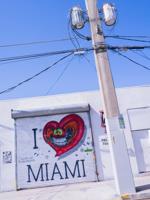 miami, wynwood art district, street art