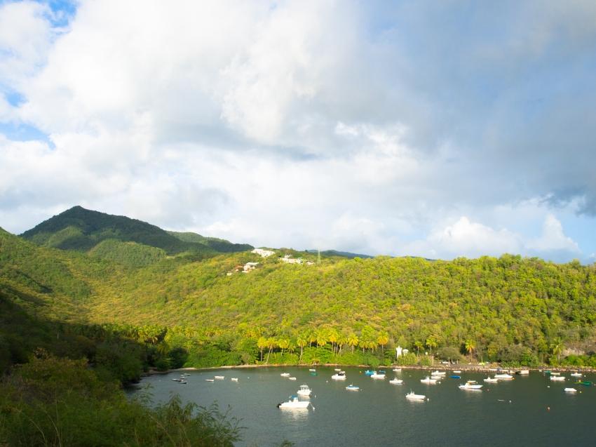guadeloupe, anse à la barque, basse terre, vieux habitants