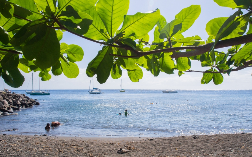 port, vieux fort, basse terre, guadeloupe