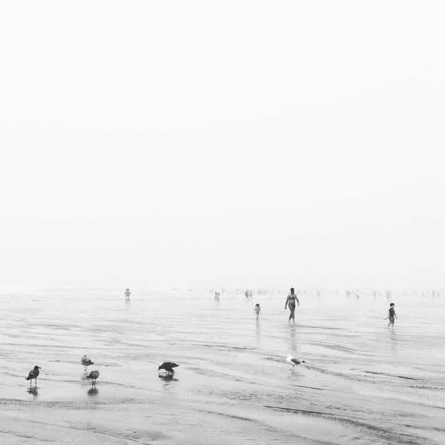 angleterre, cornwall, cornouailles, photographie, brouillard