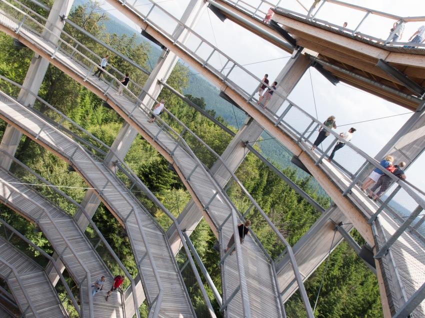 bad wildbad, canopée, baumwipfelpfad, Schwarzwald, foret noire, sommerbergbahn