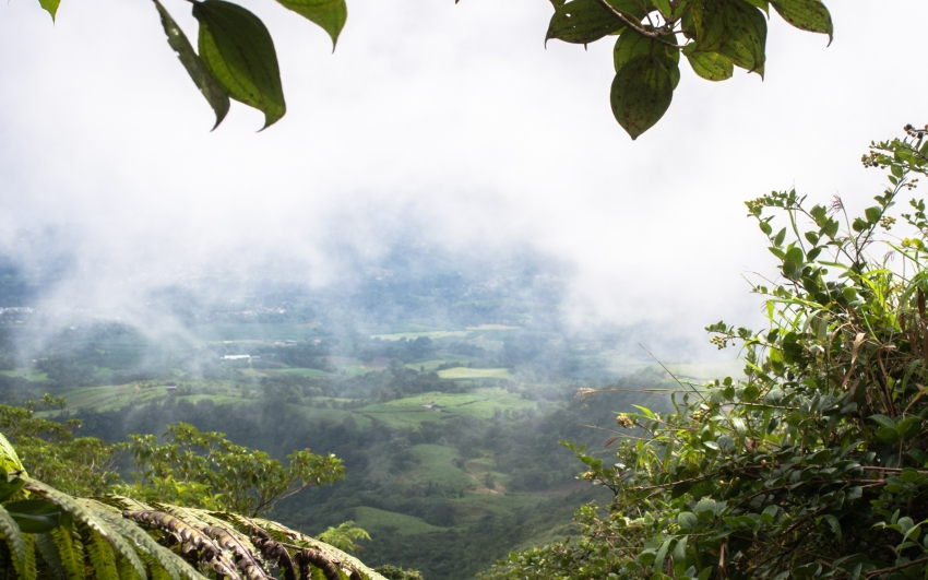 montagne, pelé, volcan, martinique, saint pierre, antilles, caraïbes