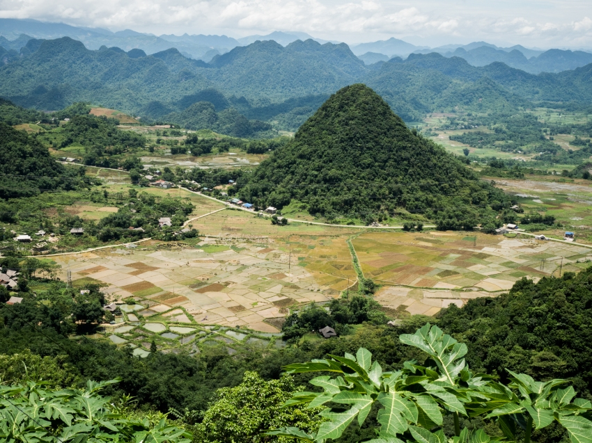 vietnam, ethnies minoritaire, rizières